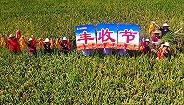 中国农民丰收节来了!习近平:这是一件影响深远的大事