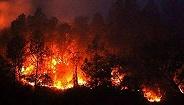 侠客岛:美国加州山火,为何经月不熄?