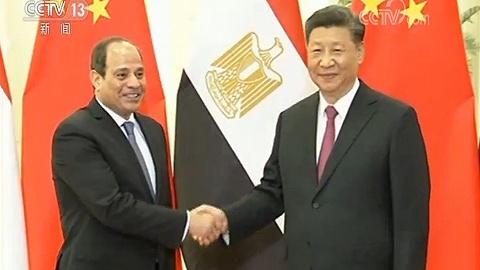 习近?#20132;?#35265;埃及总统