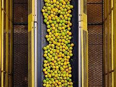 中国NFC果汁市场将会高速增长,一家巴西公司想要抓住这个机会